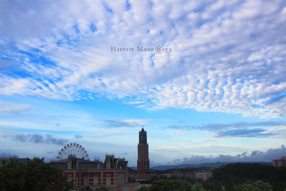 鱗雲の喜び_b0208495_00350675.jpg