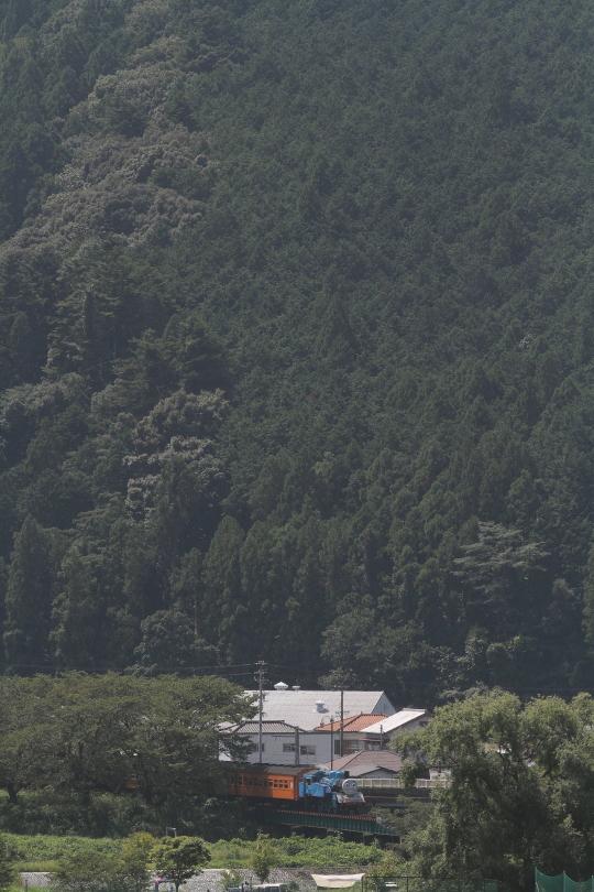夏の日射しとトーマスくん - 2014年・大井川 -  _b0190710_2261330.jpg