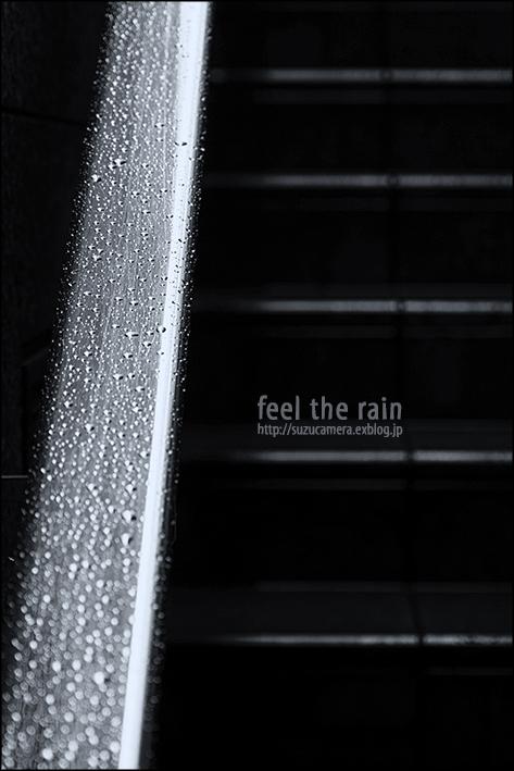 雨を感じる_f0100215_2053289.jpg