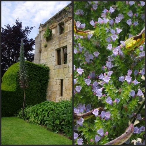 イギリス旅行記4 Sudeley Castle_e0136424_21091220.jpg