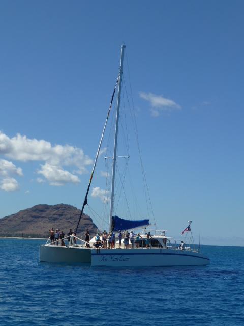 Hawaii 旅行記 ドルフィン・ウォッチング編_e0237625_18165050.jpg
