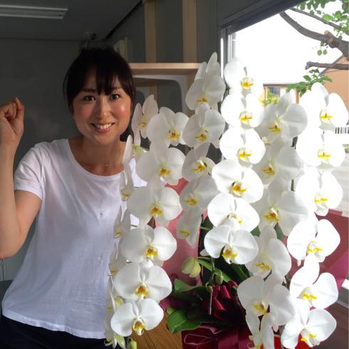 吉田けい子後援会事務所開きをします!〜7月10日9時から〜_b0199244_18075500.jpg