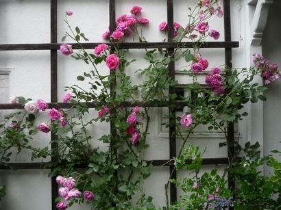 「ブラームスの家」 バーデン・バーデンにて_a0280569_549326.jpg