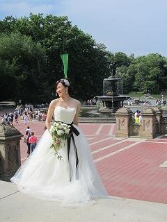 Bridal Photo Tour_b0209691_872885.jpg