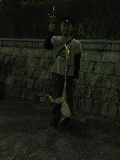 夜のズーナマ釣り_a0164918_19472966.jpg