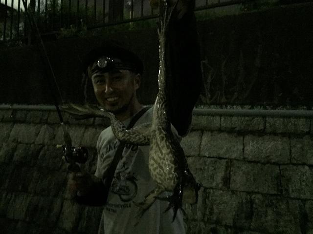 夜のズーナマ釣り_a0164918_19473292.jpg