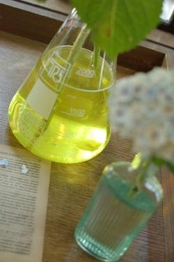 今回の結婚式のテーマは【実験!!】_a0114655_11465454.jpg