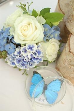 今回の結婚式のテーマは【実験!!】_a0114655_11483427.jpg