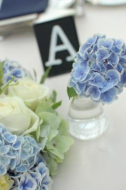 今回の結婚式のテーマは【実験!!】_a0114655_1148560.jpg
