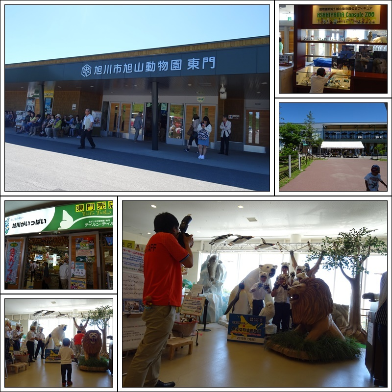 旭山動物園バスツアー_b0236665_05020450.jpg