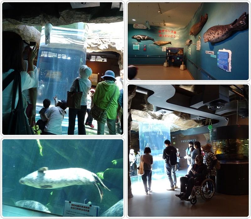 旭山動物園バスツアー_b0236665_05075408.jpg