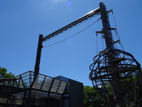 旭山動物園バスツアー_b0236665_06035879.jpg