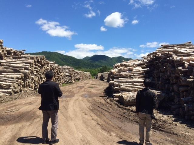 三笠プロジェクト2015、岩見沢市長図録購入_c0189970_08491893.jpg