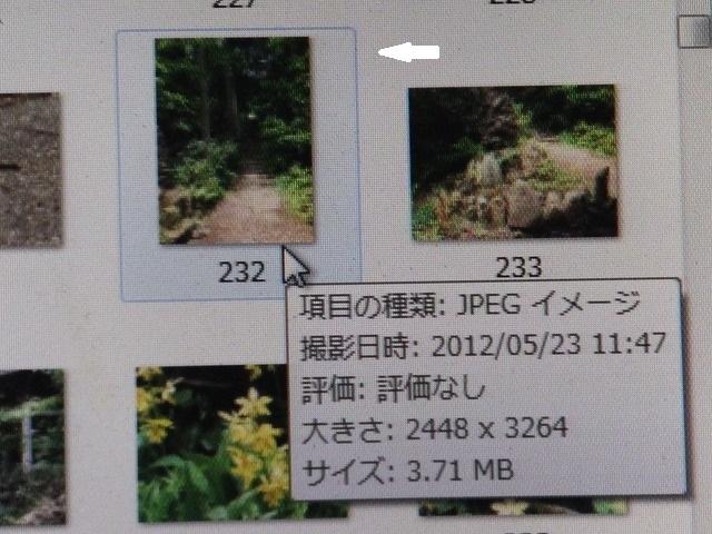 b0317485_18473269.jpg