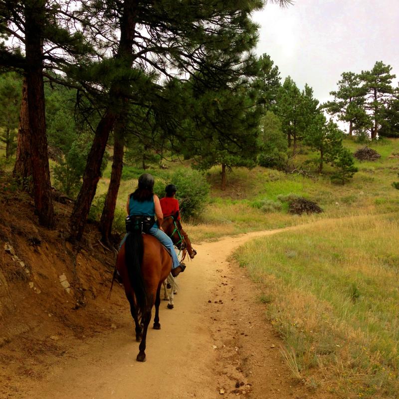 Boulder CO. USA Mountain Running Trip 2014/7/22-23_b0220886_17463964.jpg