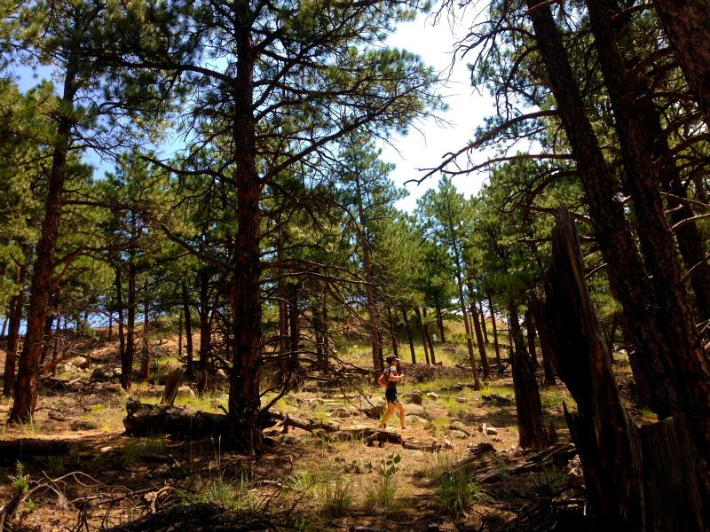 Boulder CO. USA Mountain Running Trip 2014/7/22-23_b0220886_1750276.jpg