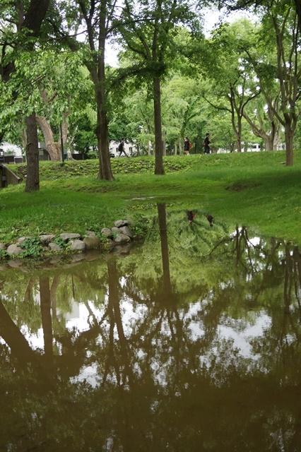 北海道大学は観光地でもあり、文化伝承の施設、大学を観光に生かせ!!_d0181492_1442614.jpg