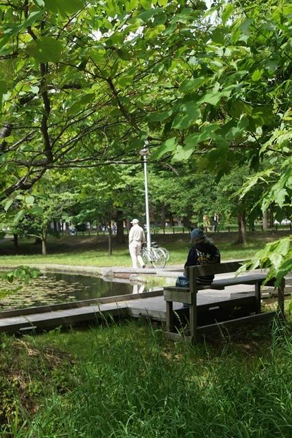 北海道大学は観光地でもあり、文化伝承の施設、大学を観光に生かせ!!_d0181492_1453355.jpg