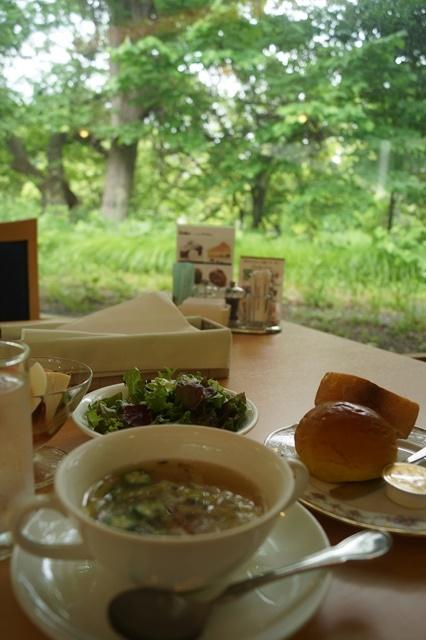 北海道大学は観光地でもあり、文化伝承の施設、大学を観光に生かせ!!_d0181492_147367.jpg