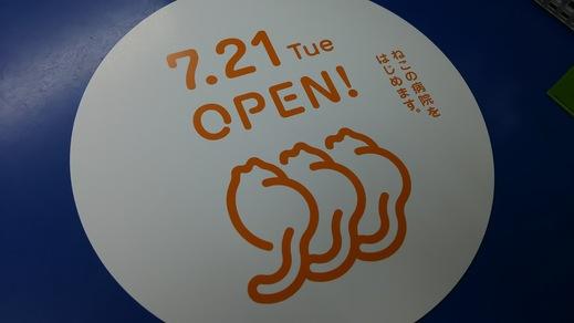 ねこ病院開業まであと10日_a0019819_19395332.jpg