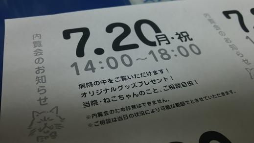 ねこ病院開業まであと10日_a0019819_19425886.jpg