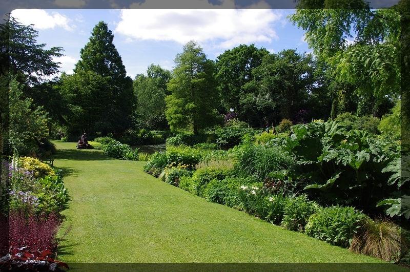 イギリス旅行記5 The Beth Chatto Gardens_e0136424_23024226.jpg