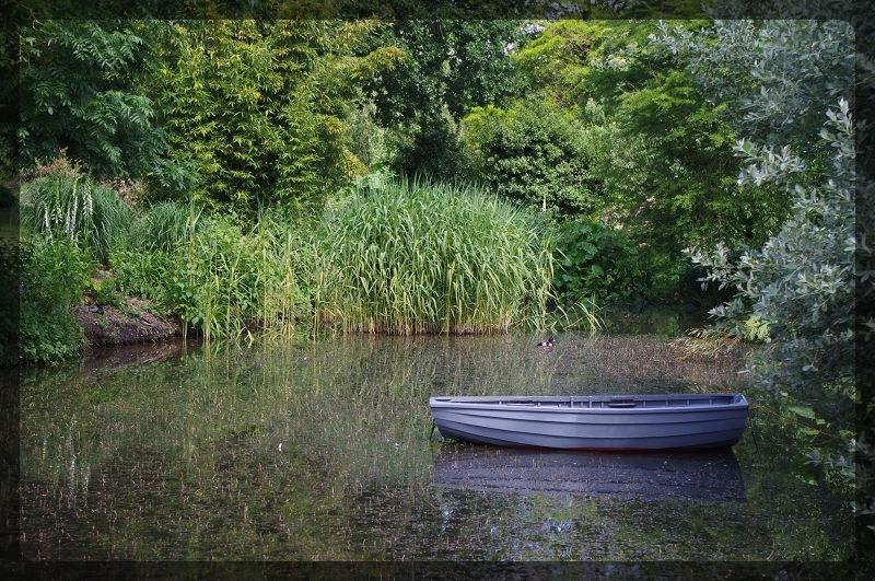 イギリス旅行記5 The Beth Chatto Gardens_e0136424_23024816.jpg