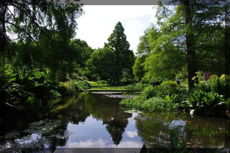 イギリス旅行記5 The Beth Chatto Gardens_e0136424_23025141.jpg