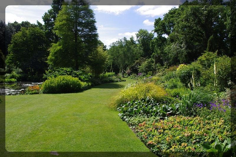 イギリス旅行記5 The Beth Chatto Gardens_e0136424_23025752.jpg