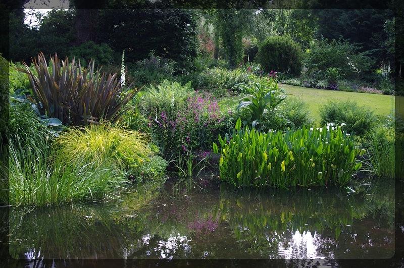 イギリス旅行記5 The Beth Chatto Gardens_e0136424_23031014.jpg