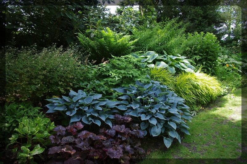 イギリス旅行記5 The Beth Chatto Gardens_e0136424_23032035.jpg