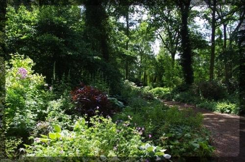 イギリス旅行記5 The Beth Chatto Gardens_e0136424_23033057.jpg