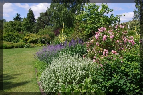イギリス旅行記5 The Beth Chatto Gardens_e0136424_23033699.jpg