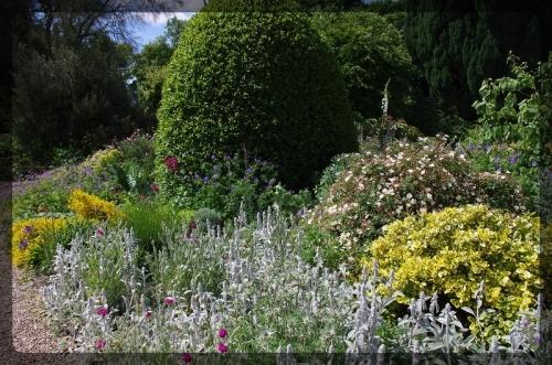 イギリス旅行記5 The Beth Chatto Gardens_e0136424_23034604.jpg