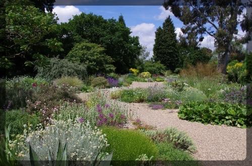 イギリス旅行記5 The Beth Chatto Gardens_e0136424_23035435.jpg