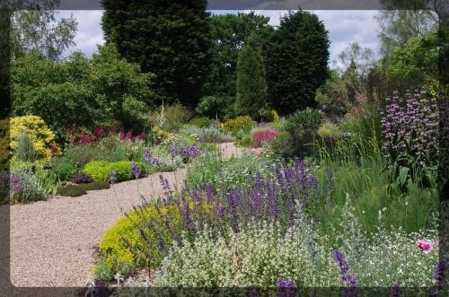 イギリス旅行記5 The Beth Chatto Gardens_e0136424_23035737.jpg