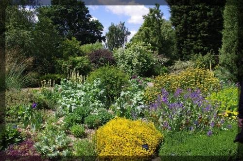 イギリス旅行記5 The Beth Chatto Gardens_e0136424_23040557.jpg