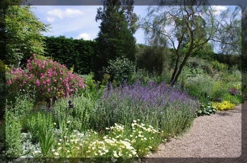 イギリス旅行記5 The Beth Chatto Gardens_e0136424_23041093.jpg