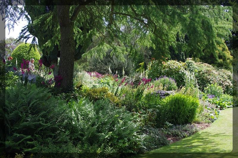イギリス旅行記5 The Beth Chatto Gardens_e0136424_23041817.jpg
