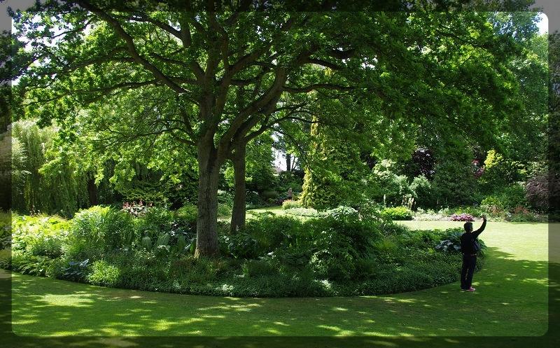 イギリス旅行記5 The Beth Chatto Gardens_e0136424_23043057.jpg