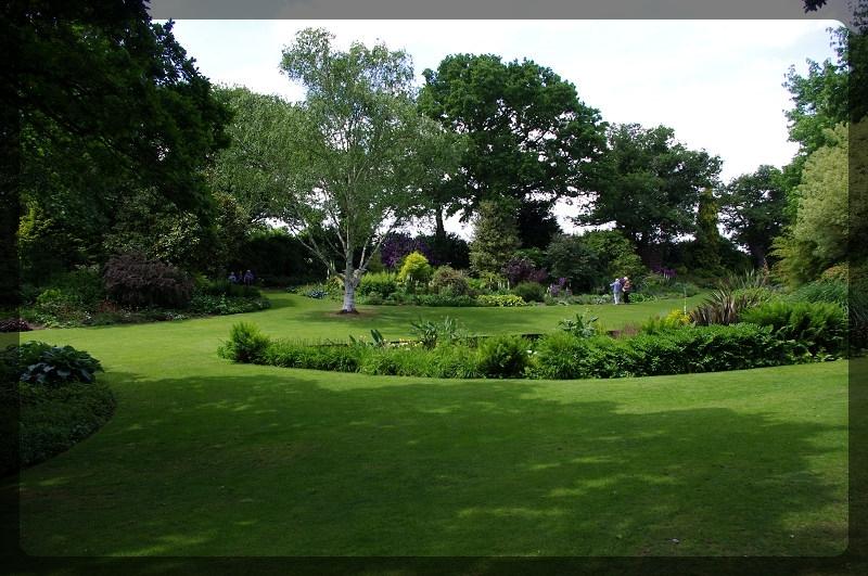 イギリス旅行記5 The Beth Chatto Gardens_e0136424_23043228.jpg