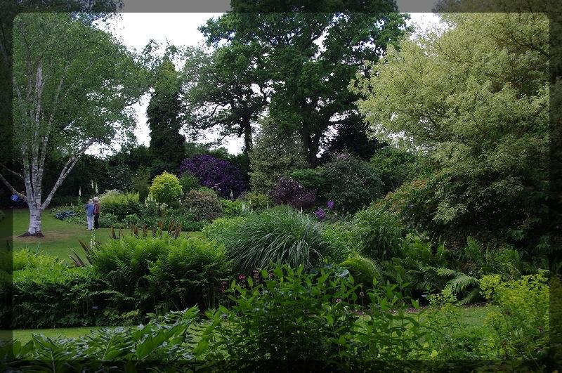 イギリス旅行記5 The Beth Chatto Gardens_e0136424_23044058.jpg
