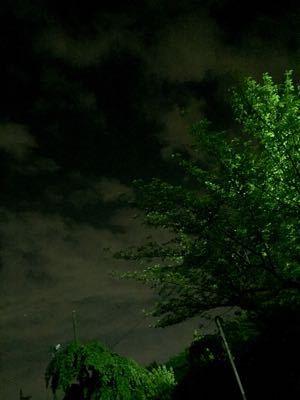夜ランニング (78)  インターバル練習♪_b0203925_5365489.jpg