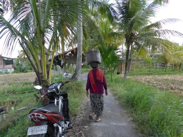 バリ島へ行く。⑫ ~ワルン・ボダッ・マリアへの道~_f0232060_10134089.jpg