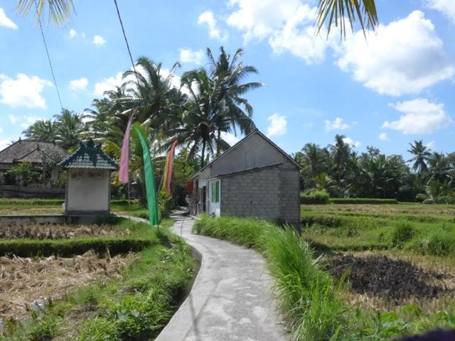 バリ島へ行く。⑫ ~ワルン・ボダッ・マリアへの道~_f0232060_10154873.jpg