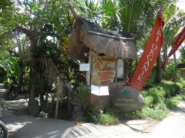 バリ島へ行く。⑫ ~ワルン・ボダッ・マリアへの道~_f0232060_10293243.jpg