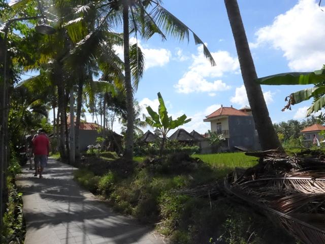 バリ島へ行く。⑫ ~ワルン・ボダッ・マリアへの道~_f0232060_1091847.jpg