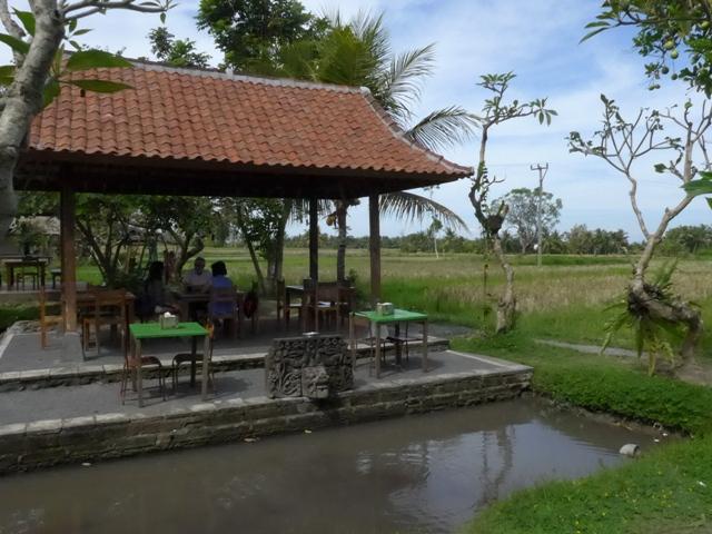 バリ島へ行く。⑭ ~ブランコと蓮の池があるカフェ~_f0232060_11584233.jpg