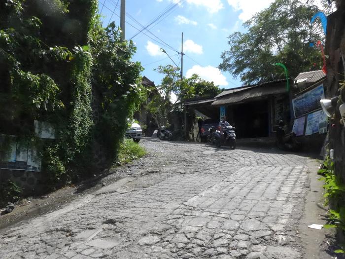 バリ島へ行く。⑫ ~ワルン・ボダッ・マリアへの道~_f0232060_958555.jpg