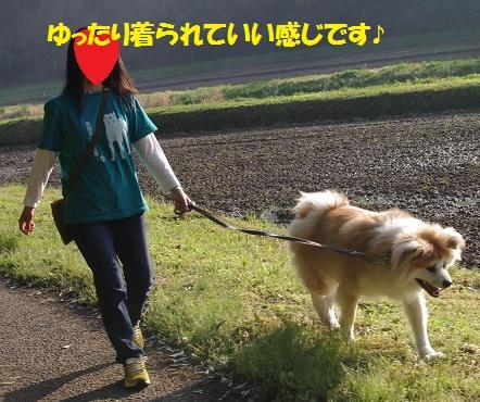 f0121712_16303716.jpg